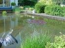 Tuinverzorging de Molen